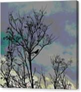Bird In Tree Silhouette Iv Abstract Canvas Print