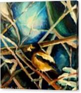 Bird In Winter Canvas Print