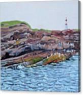 Bird Island Canvas Print