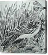 Skyirk Bird Canvas Print