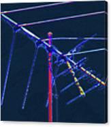 Bird Kite At Midnight Canvas Print