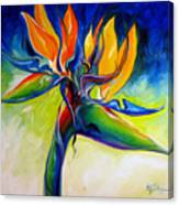 Bird Of Paradise 24 Canvas Print