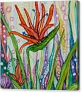 Bird Of Paradise In An Imaginary Garden Canvas Print