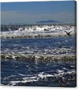 Bird On A Wave Canvas Print