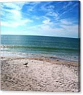 Bird On The Beach Canvas Print