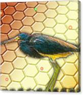 Bird Ponders The Disappearing Bees And Several Biological Markers Left In The Hive Canvas Print