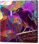 Bird Rain Rest Animals  Canvas Print