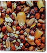 Bird Seed Canvas Print