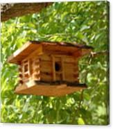 Birdhouse 5 Canvas Print