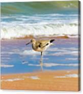 Birdling Canvas Print