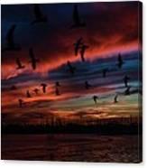 Birds Above Canvas Print