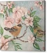 Birds And Blossoms Canvas Print