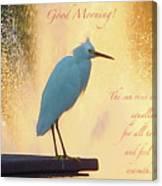 Birds And Fun At Butler Park Austin - Birds 3 Detail Macro Poster - Good Morning Canvas Print