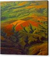 Bird's Eye View ... Montana Art Photo Canvas Print