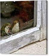 Birds In A Window Canvas Print