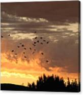Birds In The Sky Canvas Print