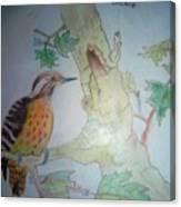 Bird's Life Canvas Print