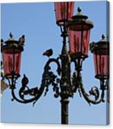 Birds On A Lamp Post In Venice Canvas Print