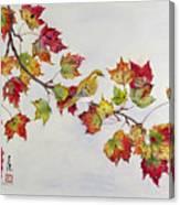 Birds On Maple Tree 1 Canvas Print