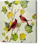 Birds On Maple Tree 2 Canvas Print