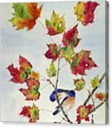 Birds On Maple Tree 8 Canvas Print