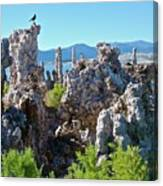 Birds On Tufa Towers-mono Lake Canvas Print