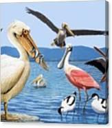 Birds With Strange Beaks Canvas Print