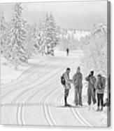 Birkebeiner Ski Trail Canvas Print