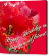 Birthday Special Friend - Red Parrot Tulip Canvas Print