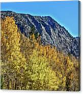 Bishop Creek Mountains Canvas Print