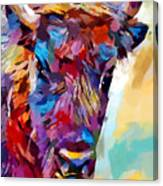 Bison 2 Canvas Print