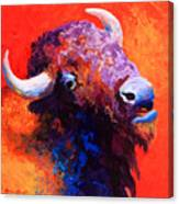 Bison Attitude Canvas Print