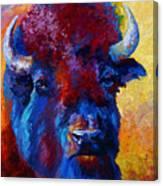 Bison Boss Canvas Print