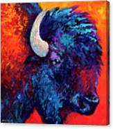 Bison Head Color Study II Canvas Print