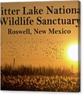 Bitter Lake National Wildlife Refuge Birds, Roswell, New Mexico Canvas Print