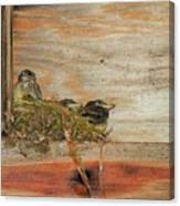 Bitty Birds Canvas Print