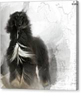 Black And Tan Afghan Hound In The Wind Canvas Print