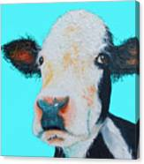 Black And White Cow On Blue Background Canvas Print
