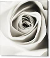 Black And White Delight Canvas Print