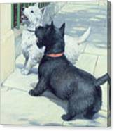 Black And White Dogs Canvas Print