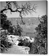 Black And White Grand Canyon 2 Canvas Print