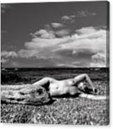 Black And White Nude 01 Canvas Print
