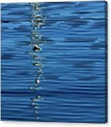 Black And White On Blue Canvas Print