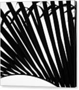 Black And White Palm Branch Canvas Print