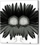 Black And White Petals Canvas Print