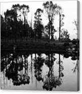 Black And White Reflected Canvas Print