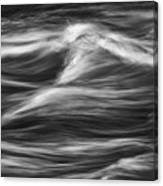 Black And White River Water Abstract  Canvas Print
