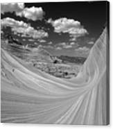 Black And White Swirling Landscape Canvas Print