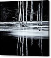 Black And White Winter Thaw Relections Canvas Print