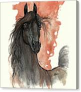 Black Arabian Horse 2013 11 13 Canvas Print